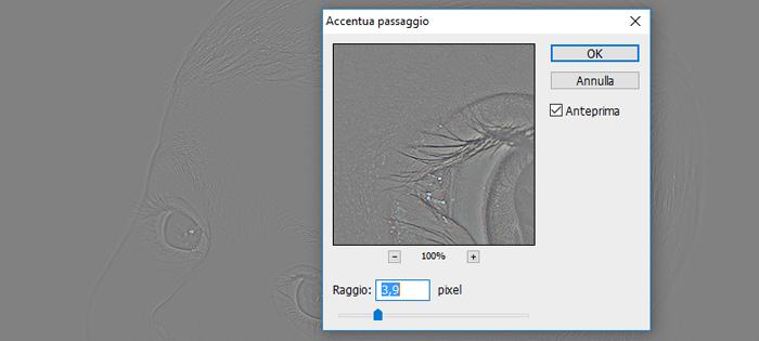 Modifica immagini digitali con PhotoPad …